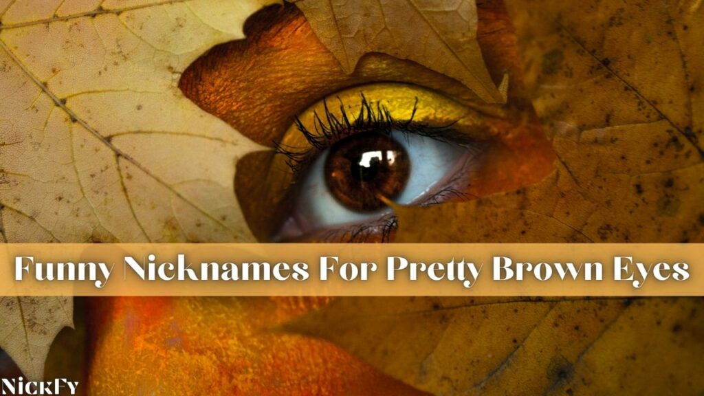 Funny Cute Brown Eyed Nicknames For People With Brown Eyes